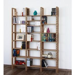 Bücherregal für das Wohnzimmer